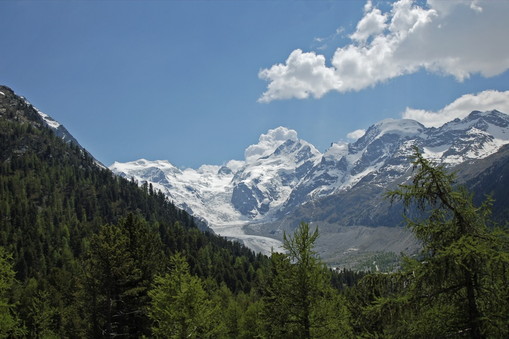Bernina-Gebiet